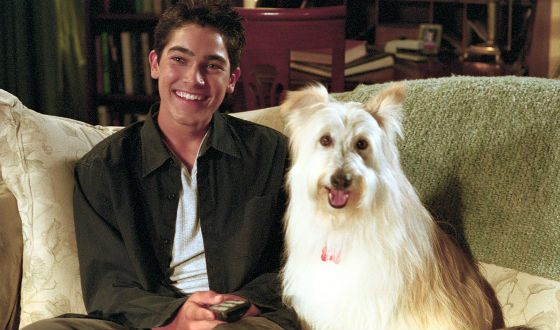 Hoechlin was the star of the series 7th Heaven for 4 years