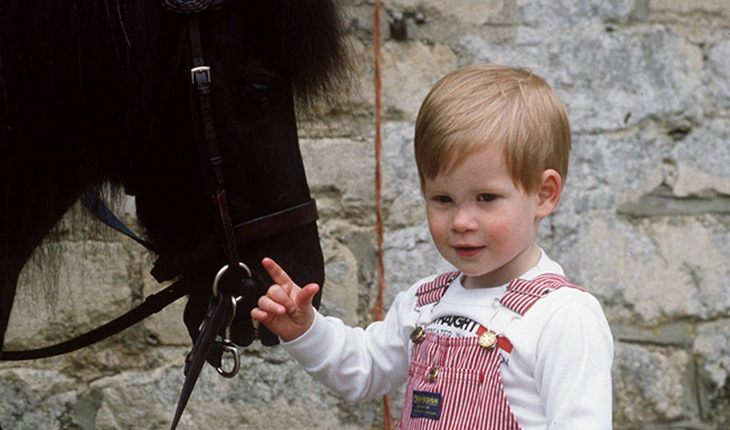 A childhood picture of Prince Harry