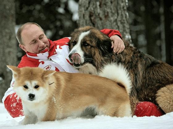 Vladimir Putin Biography Photos Career Path Family Kids Height 2020